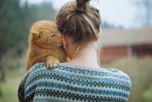 Кошачий аутотренинг