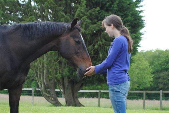 депрессия и лошади