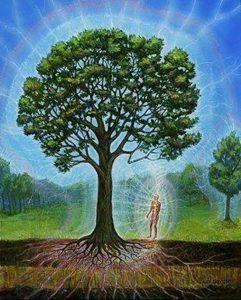 Энергетический обмен с деревьями