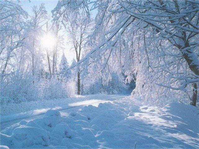 Аутотренинг недели. Зимняя медитация.