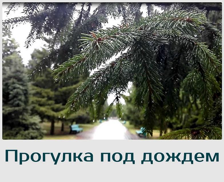 "Релаксация ""Прогулка под дождем"""
