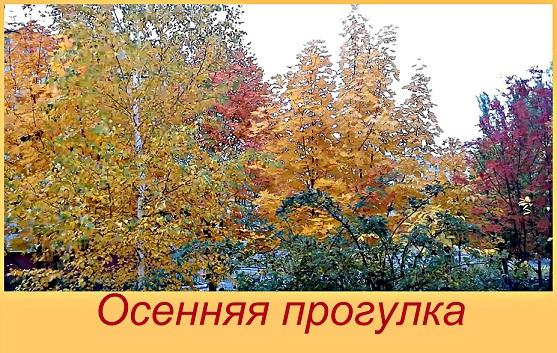 Осень. прогулка. релаксация.