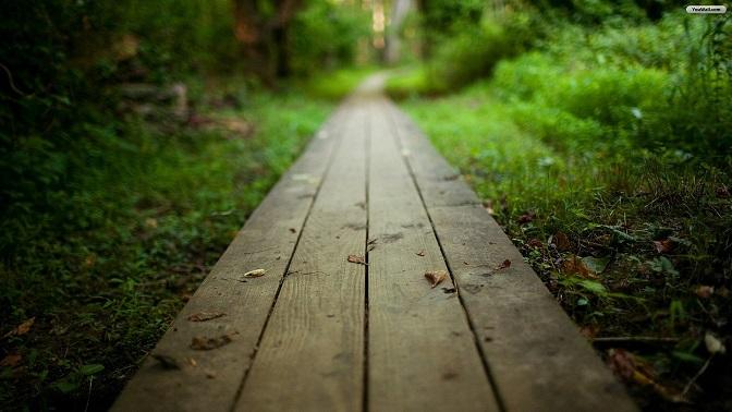 Как далеко нужно зайти для встречи с собой?